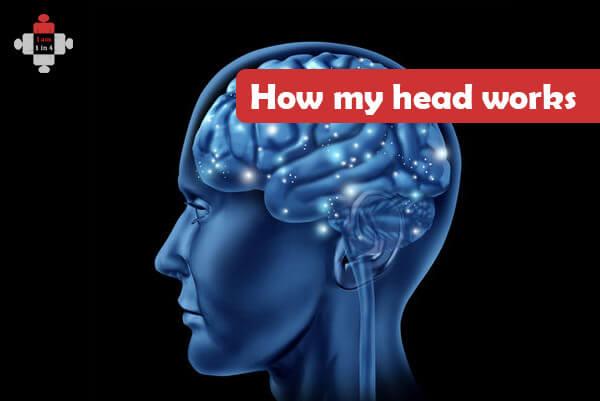 How my head works